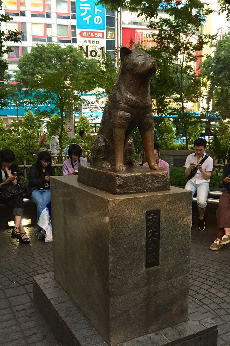 Best things to do in Tokyo. Best places to visit in Tokyo. Best attractions in Tokyo. Top attractions in Tokyo. Tokyo travel blog. Tokyo blog.