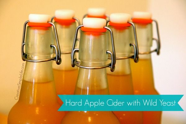 Hard Apple Cider with Wild Yeast from CreativeSimpleLife.com
