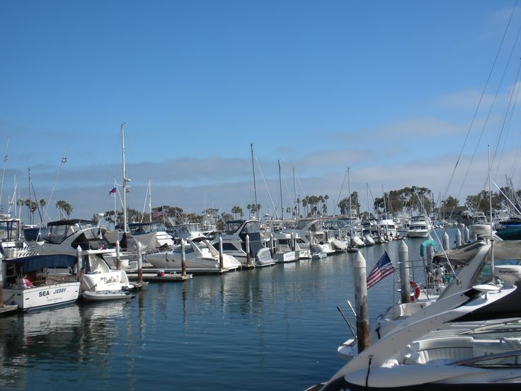13 best images about things to do in dana point for Dana point harbor fishing