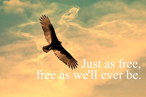 """Free"" Zac Brown Band"