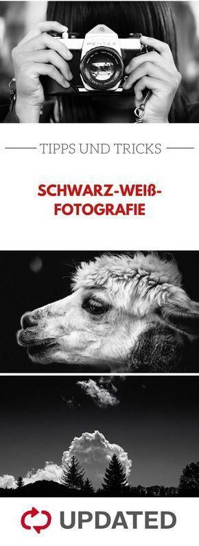 Kontraste richtig nutzen und Motive perfekt in Szene setzen – das ist bei schwarz-weiß-Fotografie besonders wichtig. Mit diesen Tipps gelingt es dir!…