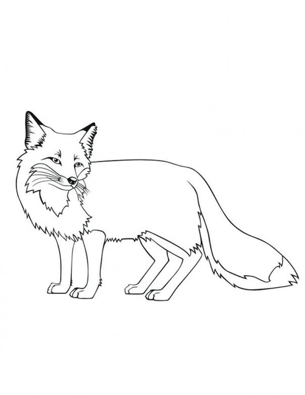 Fox Coloring Pages Printable Kidswoodcrafts Fox Coloring Page Horse Coloring Pages Animal Coloring Pages