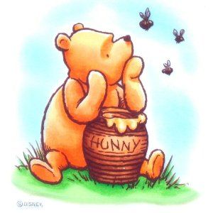 37 Best Winnie The Pooh Hunny Pots And Stuff Images On