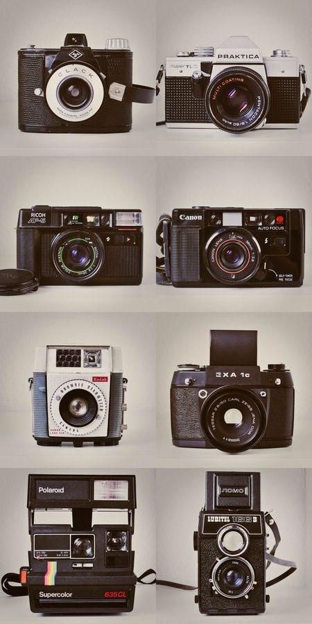 Follow My Pinterest: ~CameraCatherine ~