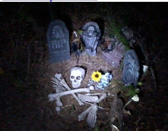 DIY Haunted Halloween Trail   2011 Our Haunted Halloween ...