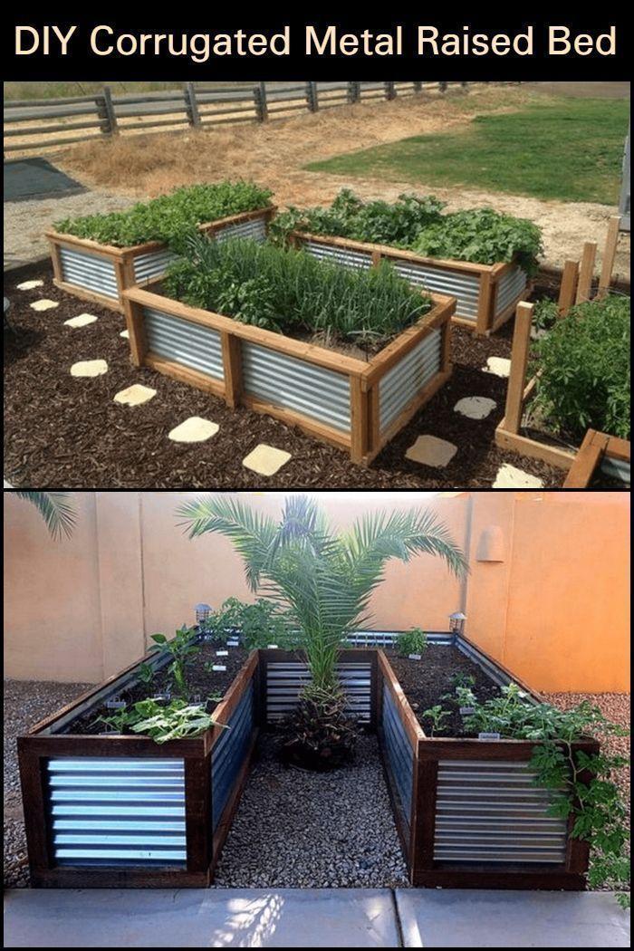 Bauen Sie Ihr Eigenes Wellblech Hochbeet Bauen Eigenes Ihr Sie Wellblechhochbeet Indoor Garden Vegetable Rai In 2020 Garden Beds Building A Raised Garden Backyard