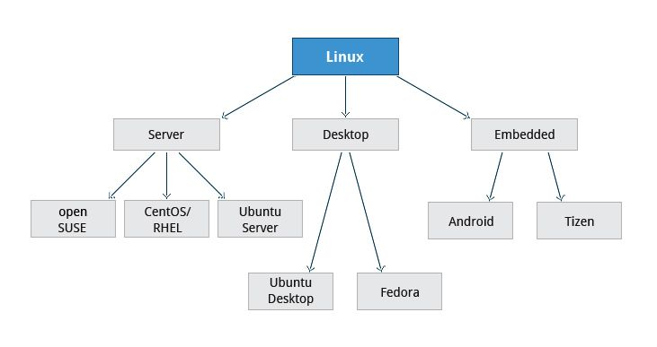 Choosing a Linux Distribution | Section 3: Linux Distribution Installation | LFS101x Courseware | edX