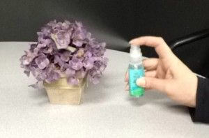 10 Ways To Reuse A Lens Cleaner Bottle