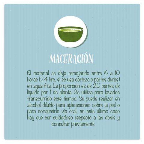 Otra de las formas de dar provecho a las propiedades de las plantas medicinales es la maceración Descubrela! #plantasmedicinales #maceracion