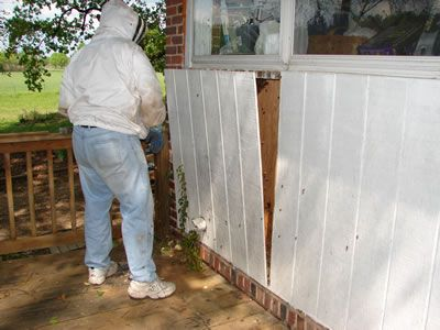 Advice on #honey #bee removal and how to identify the #bees and bee problem. Bee Rescue and increase the bees population is primary task of Eco Bee Removal.