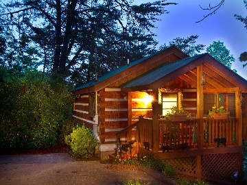 Pigeon Forge cabin rental - Log Cabin, quiet, peaceful and private. 9 Min to Pigeon Forge Attractions.