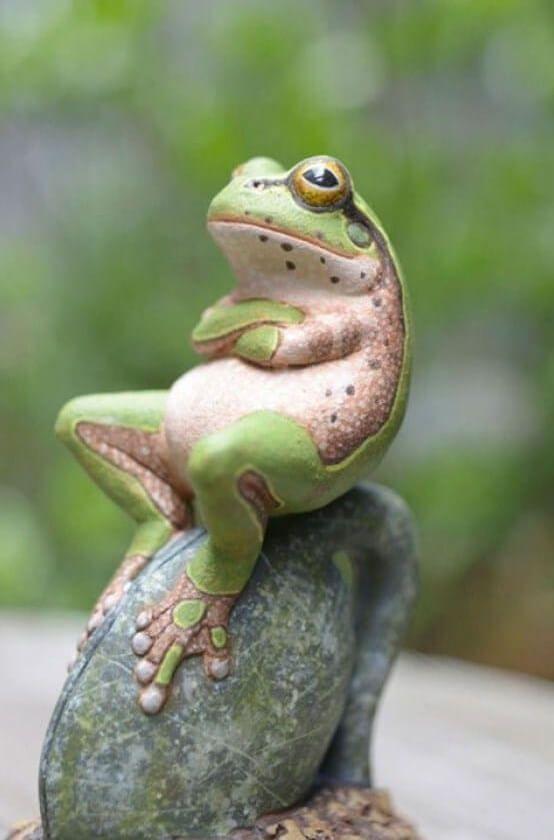 Фото: Веселые животные, которые уверенны, что они люди