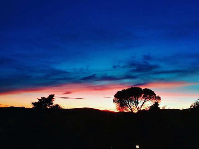 Reposting @ernestopiovicinanza: In love with sunsets. 🌇💙 Stranger Things! 😱 #AlquilerDeFincas #AlquilerdeCabañas #AlquilerDeFincasEnElEjeCafetero #AlquilerDeFincasEnAntioquia #FincasEnMelgar #FincasEnArriendo #FincasParaAlquilar #FincasDeTurismo #PaquetesTuristicos #CasasCampestres Tel: 3228328-3213024788
