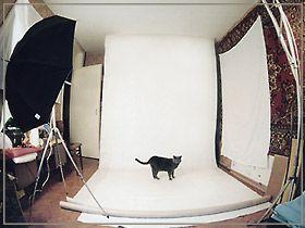 Домашняя фотостудия своими руками/ Подборка статей. Обсуждение на LiveInternet…