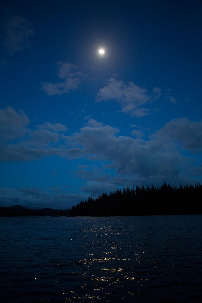 Alaskan moonlight by Brice Portolano
