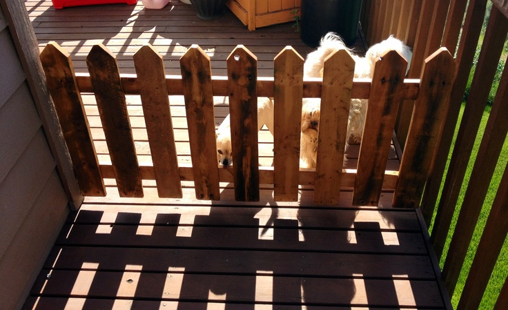 Pallet picket fence dog gate landscaping ideas for Pallet picket fence