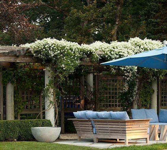 ideias jardins moradias : ideias jardins moradias:Os Jardins Planejados valorizam qualquer ambiente, explore 50 fotos de