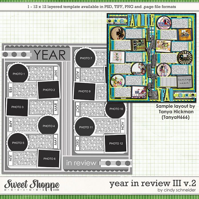 Cindy's Layered Templates - Year in Review III V2 by Cindy Schneider