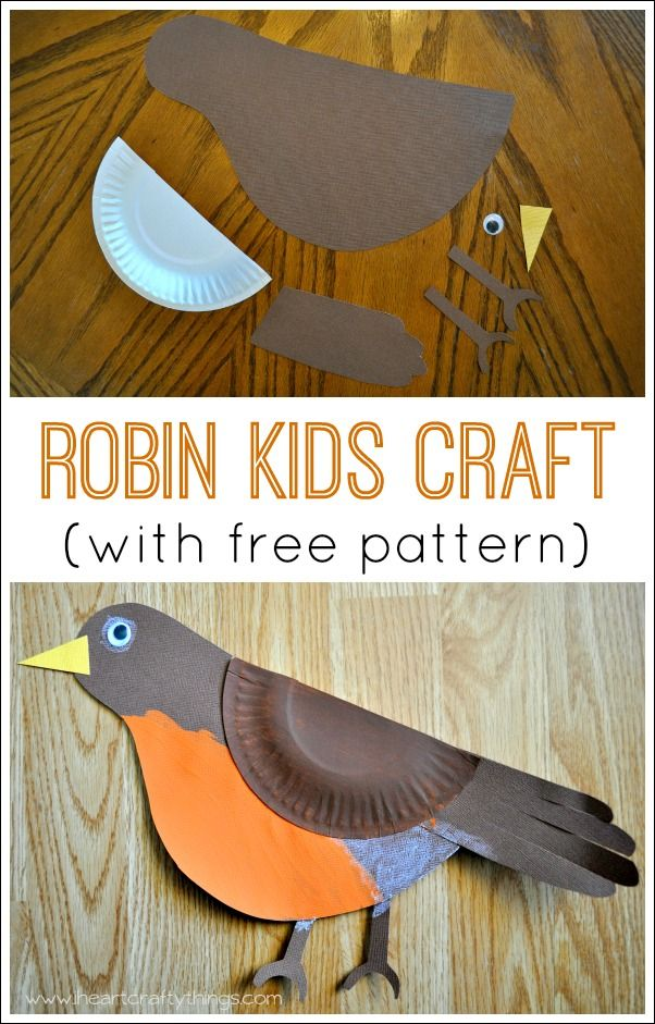 Robin Bird Paper Plate Craft