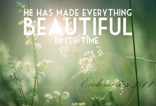 Ecclesiastes 3:11God Creations, Inspiration, Faith Shared, Android, Christian Quotes, Beautiful, Scriptures, 311, Ecclesiastes 3 11