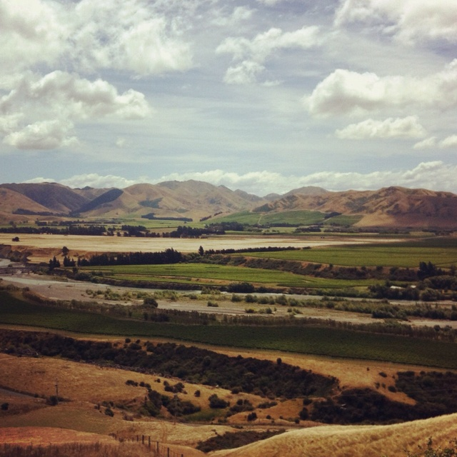 Marlborough, NZ, today.