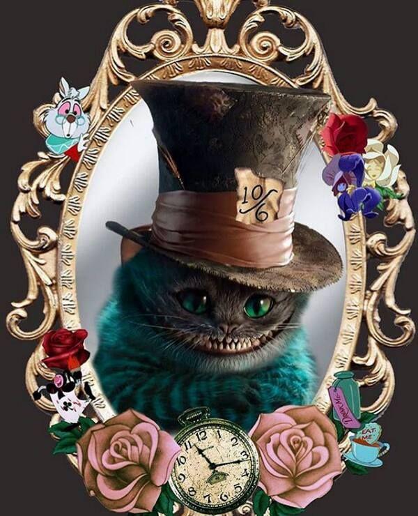 alice in wonderland / tim burton / cat                                                                                                                                                     More
