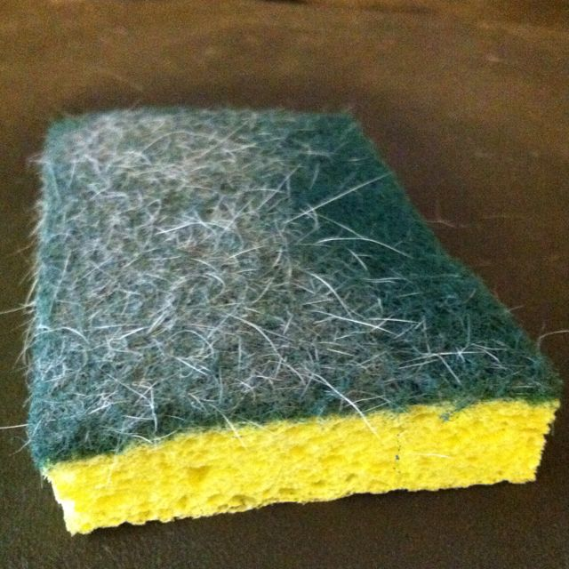 Use a dry sponge to collect dog and cat hair off your couch or chair. It works better then the Swiffer Pet Hair collector and it's cheaper! Reuse, don't throw it away!