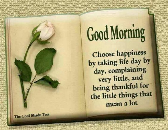 Pin by Maajid on Good morning wishes | Good morning quotes, Morning