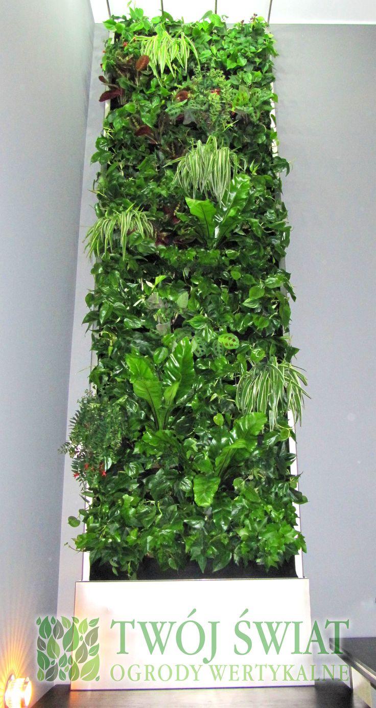 Mobilna zielona ściana na klatce schodowej. #zielonesciany  #ogrodywertykalne