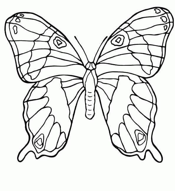 Die Besten 20 Ausmalbilder Schmetterling Ideen Auf
