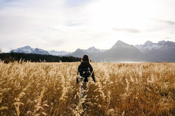 Road trip en Alaska, carte postale. - États-Unis - Blog voyage et photo