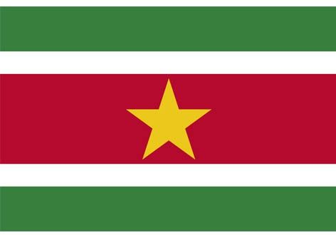 Suriname, Negara yang Memiliki Penduduk Keturunan Jawa
