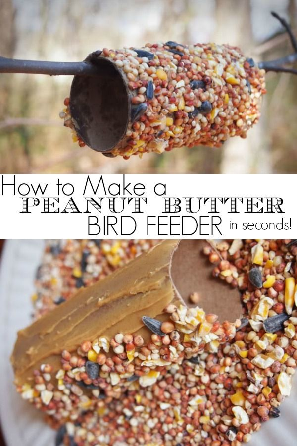 I made this simple diy peanut butter bird feeder in just seconds!  We had 6 created in just a few minutes.  I love that there is no twine or string involved!  Such a fun idea for kids.