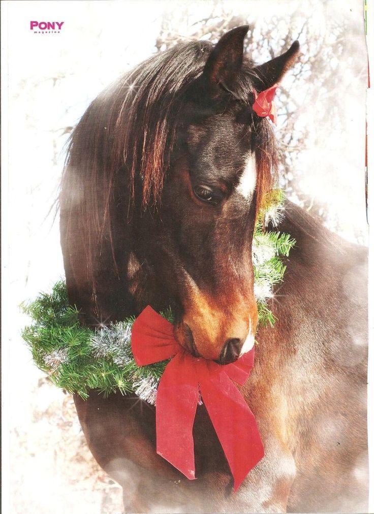 merry christmas horses pinterest merry christmas art and christmas
