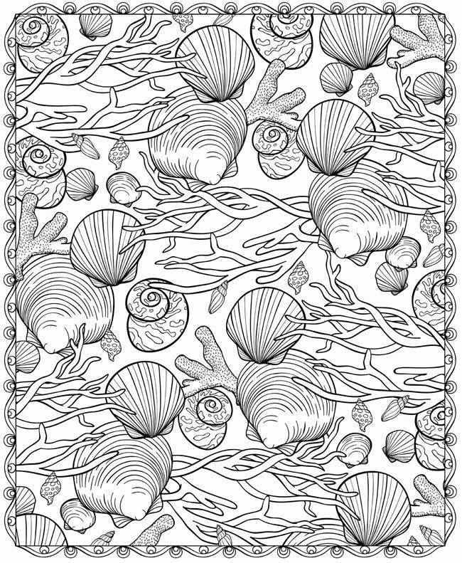 43 best Outline Sea images on Pinterest Drawings Coloring books