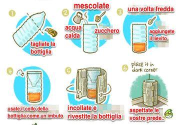 Rimedio contro le zanzare: facciamo una trappola fatta in casa http://www.iobenessere.it/rimedio-contro-zanzare-trappola-per-zanzare-fatta-in-casa/ #zanzare #rimedinaturali #trappolazanzare #estate #caldo