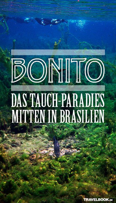 Der Amazonas, die Wasserfälle von Iguacú, Rio, die Strände im Nordosten – das verbinden Menschen mit Brasilien. Aber Bonito im Südwesten? Das kennen die wenigsten. TRAVELBOOK war dort – in einem Paradies fernab der Küsten.
