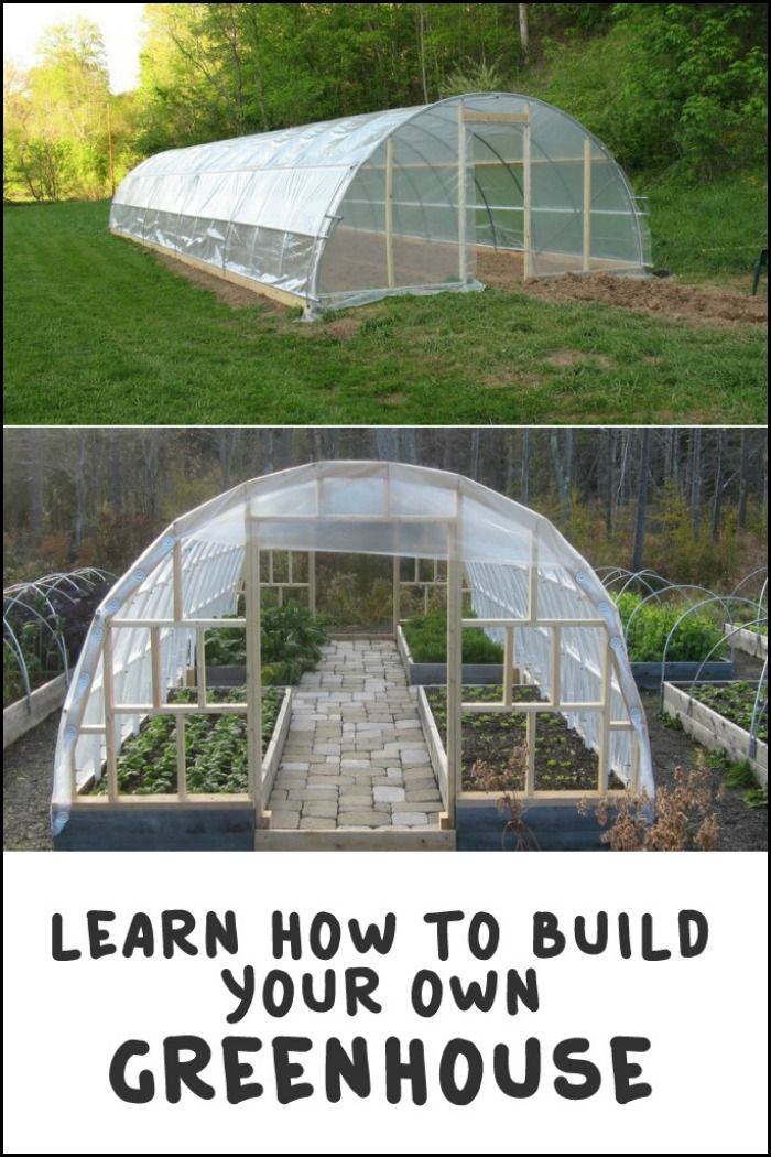 Best 20 build a greenhouse ideas on pinterest for Build own greenhouse