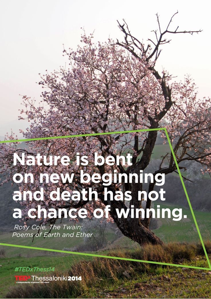 Nature is bent on new beginning and death has not a chance of winning. -Rosy Cole #TEDxThess14