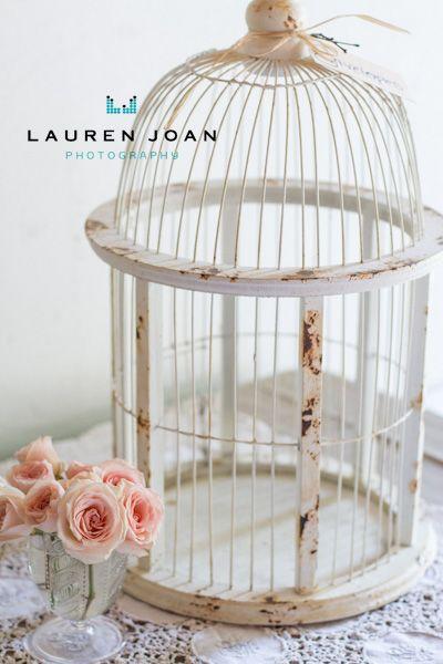 Lauren Joan Photography - Vancouver BC based photographer: Guelph Wedding - Vancouver BC Based Photographer