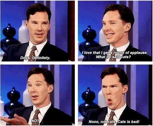 Benedict Cumberbatch loves dogs?!?!! Me too!! We have so much in common; we're soul mates!!!!! Haha