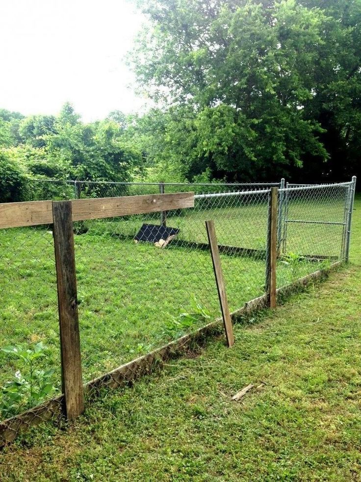 chain link fence decorating ideas new diguise chain link on inexpensive way to build a wood privacy fence diy guide for 2020 id=29118