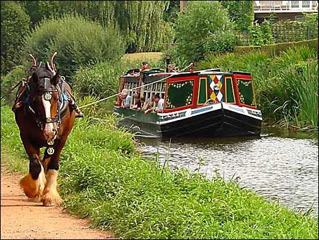 Let someone else do the hard work on a horse-drawn barge in Devon.