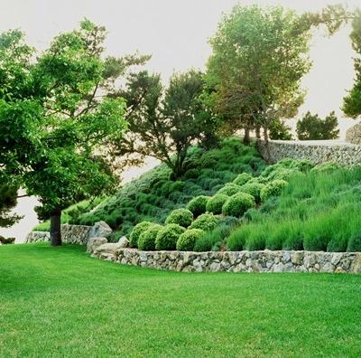 Landscape on a hill