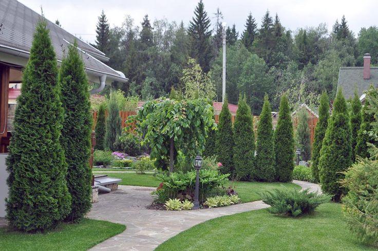 Фото учатков, фото сады подмосковья, озеленение, проект участка   Природный Парк Дизайн