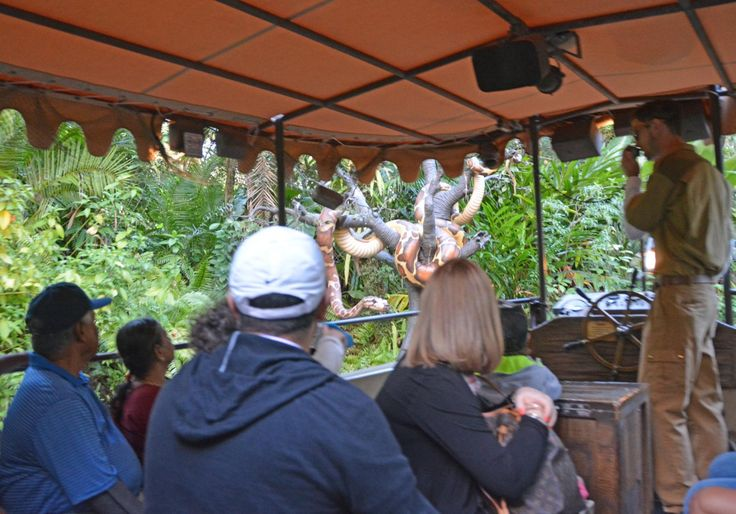 "Guests gaze a big ""snake"" in a tree as they listen to the wisecracking patter of a Cast Member on the Jungle Cruise at the Magic Kingdom. I got the shot on March 4, 2017during a long weekend at Wal…"