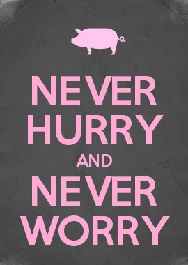NEVER HURRY AND NEVER WORRY ~ Charlotte's Web