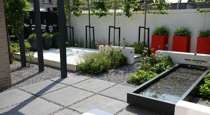Moderne onderhoudsvriendelijke achtertuin - Foto 5