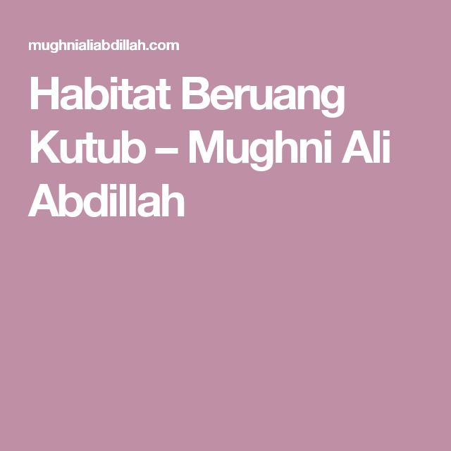 Habitat Beruang Kutub – Mughni Ali Abdillah