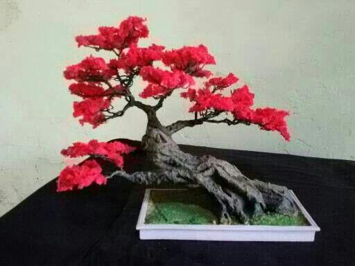 https://www.tokopedia.com/sabukkulitmurah/bonsai-replika-gp-004